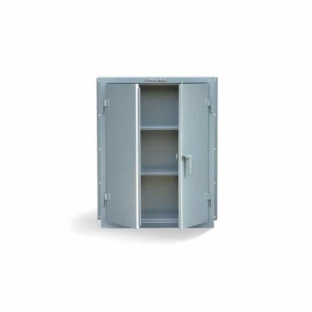 Wall Mounted Industrial Cabinet with 2 Shelves